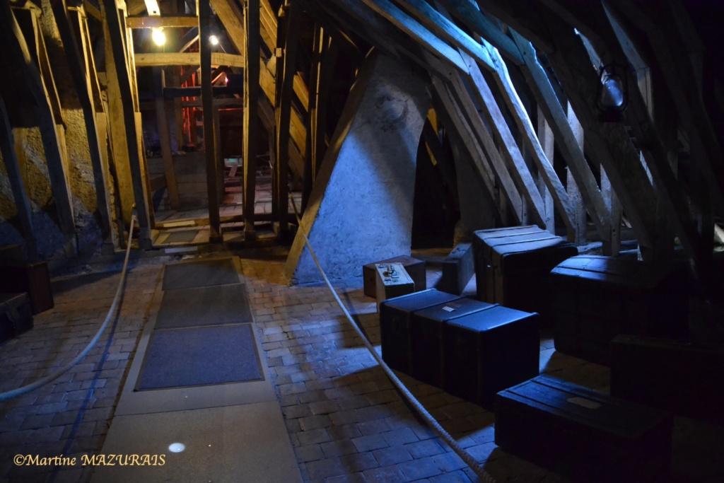 Meung sur Loire - Le château 16-05-27