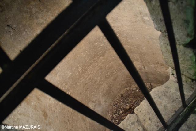 Meung sur Loire - Le château 16-05-82