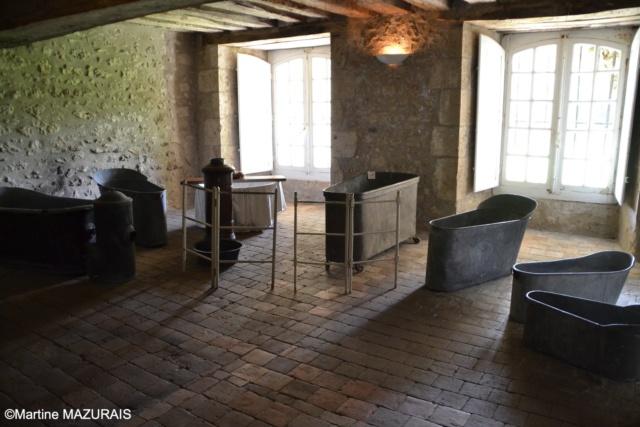 Meung sur Loire - Le château 16-05103