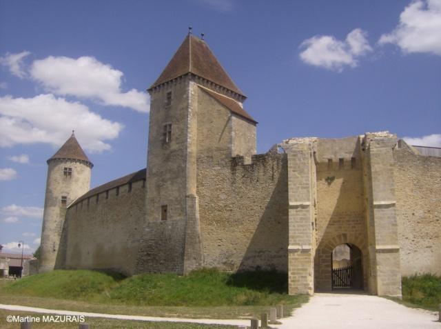 Blandy les Tours – Le château 25-07-10