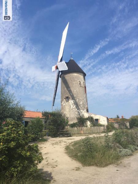 Sallertaine - Le moulin à vent de Rairé 25-08-13