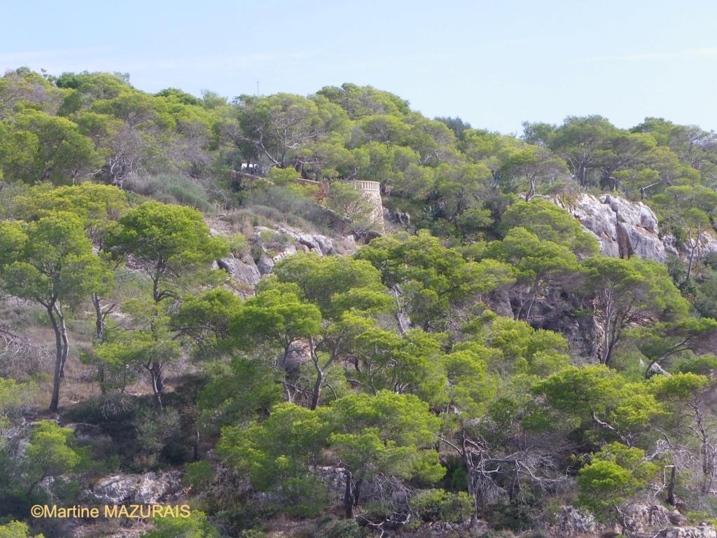 Mallorca et ses autres lieux à voir 31-10-23