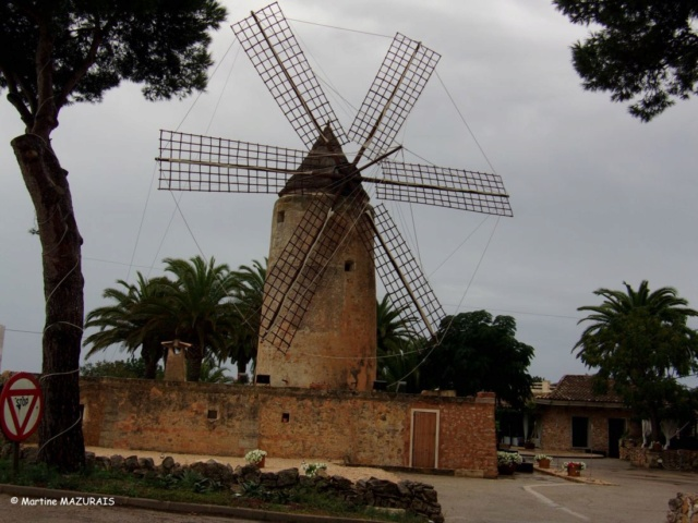 Manacor – Moulin à vent d'En Sopa F46c2-10