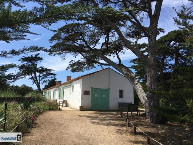 Saint-Vincent sur le Jard - Maison de Georges Clémenceau Img-4510