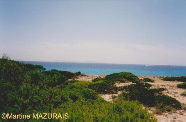 Mallorca et ses autres lieux à voir Juille38