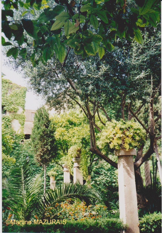 Palma de Mallorca – Les Bains Arabes Juin_132