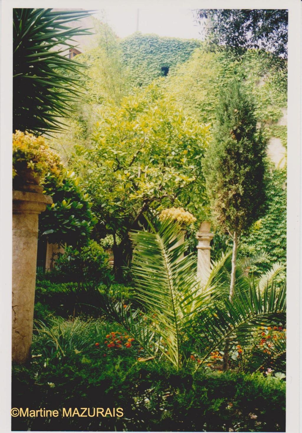 Palma de Mallorca – Les Bains Arabes Juin_133