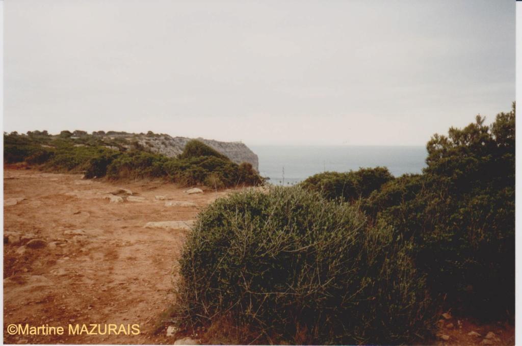 Mallorca et ses autres lieux à voir Juin_168