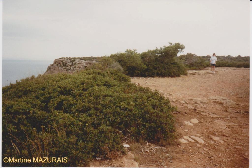 Mallorca et ses autres lieux à voir Juin_169
