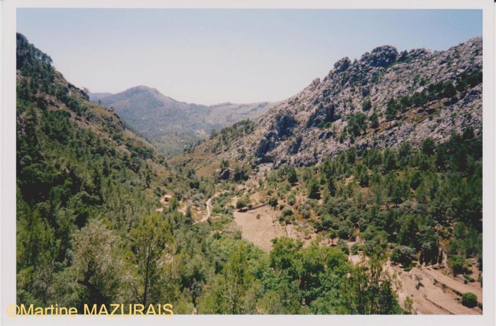 Le Mont Galatzo Le_mon10