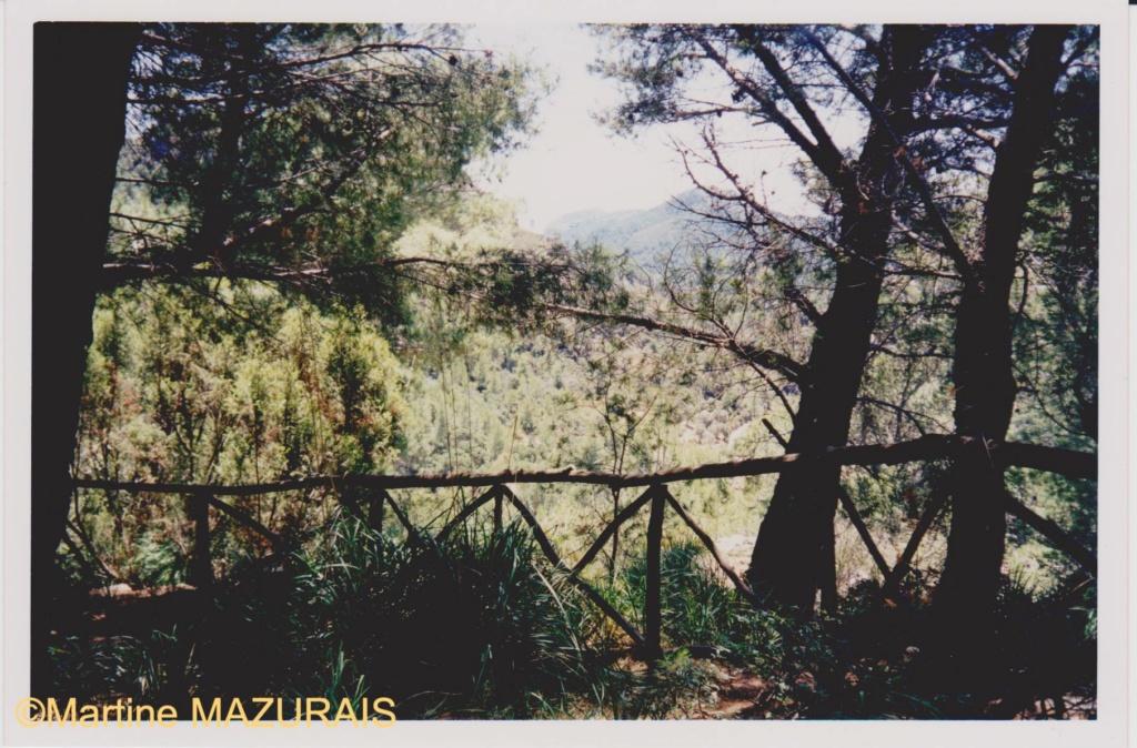 Le Mont Galatzo Le_mon11