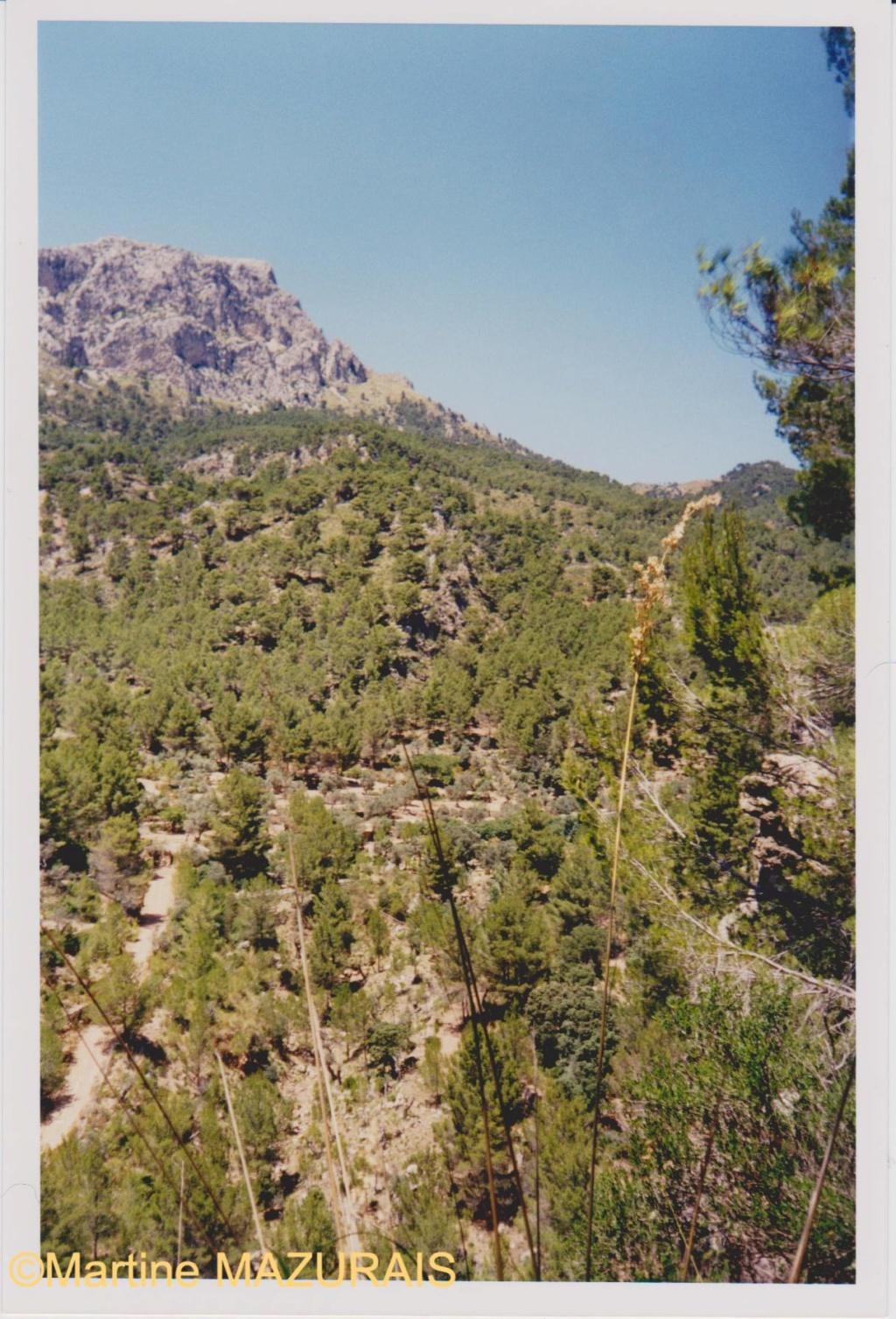Le Mont Galatzo Le_mon14