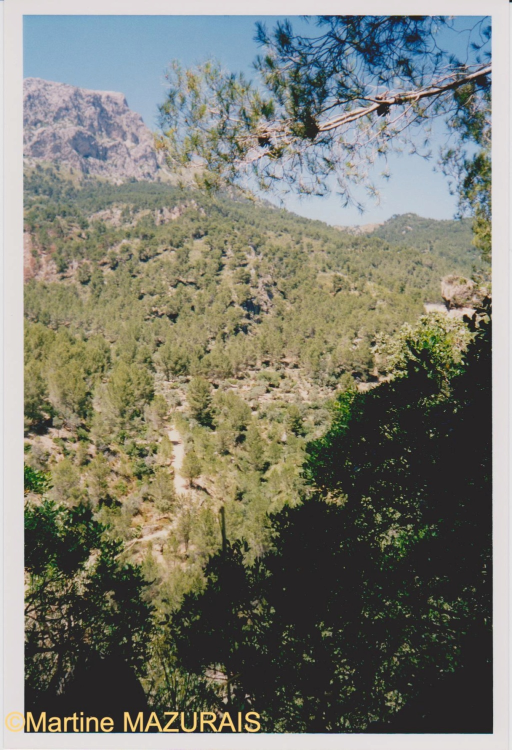 Le Mont Galatzo Le_mon15