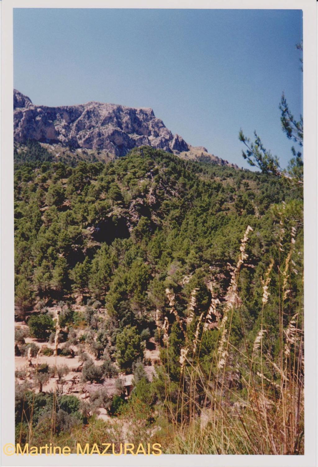 Le Mont Galatzo Le_mon26
