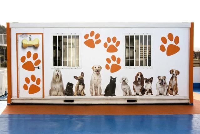 Traversée en ferry Barcelone-Alcudia avec chiens Perrer10