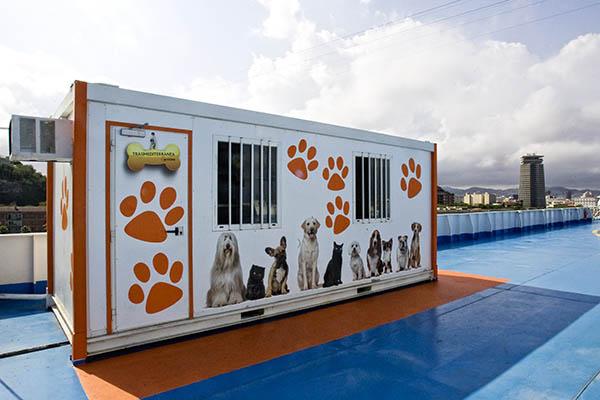 Traversée en ferry Barcelone-Alcudia avec chiens Tenaci11