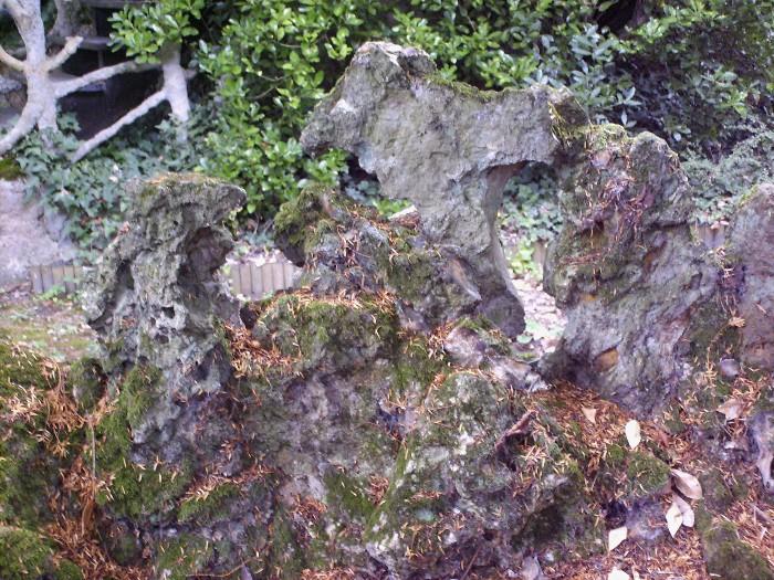 Le petit pont de pierres Hpim7412