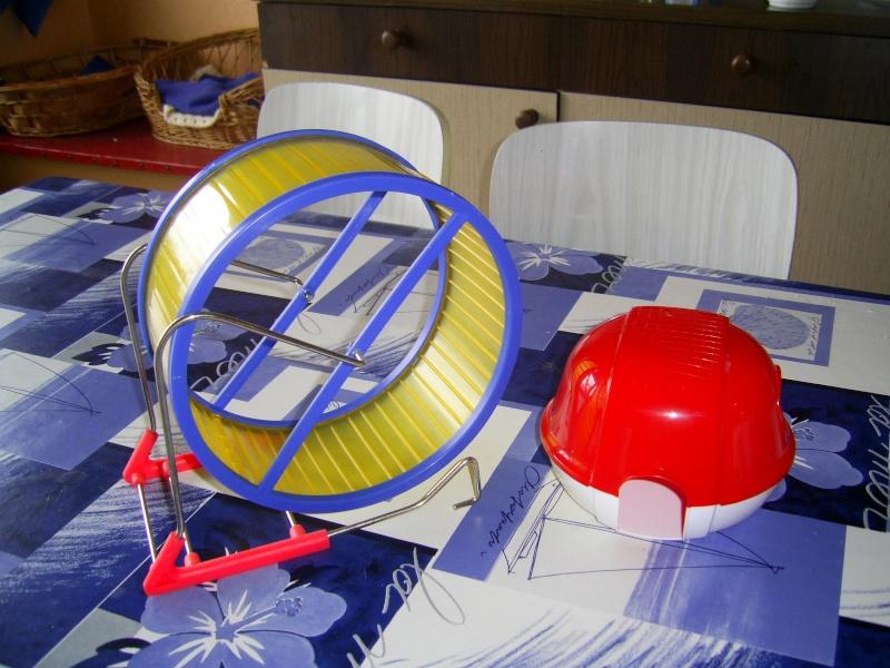 accessoires rongeur An_03210