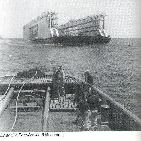 RHINOCEROS (RHM) Le_doc10