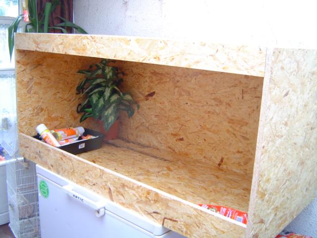 Construction d'un terrarium pour Boa constrictor imperator Dsc01416