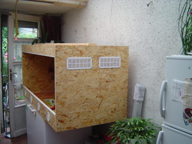 Construction d'un terrarium pour Boa constrictor imperator Dsc01418