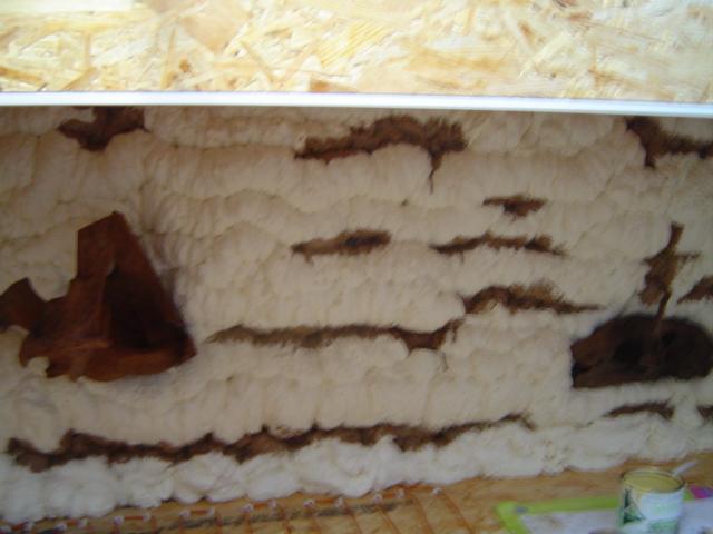 Construction d'un terrarium pour Boa constrictor imperator Dsc01425