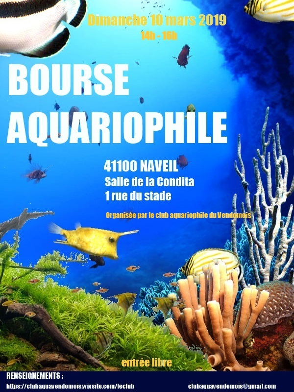 bourse aquariophile à Naveil le 10 mars 2019  Affich11