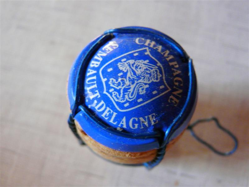 Le fil bleu P1080411