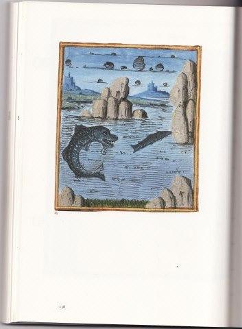 image du jour: DAUPHIN du XVe Img11