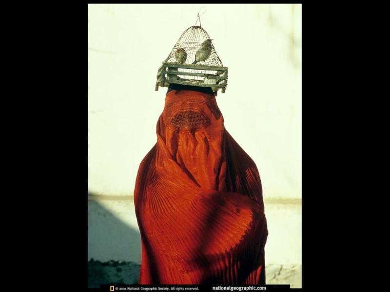 FOTOS ESPECTACULARES DE TODO EL MUNDO - Página 3 Mujera10