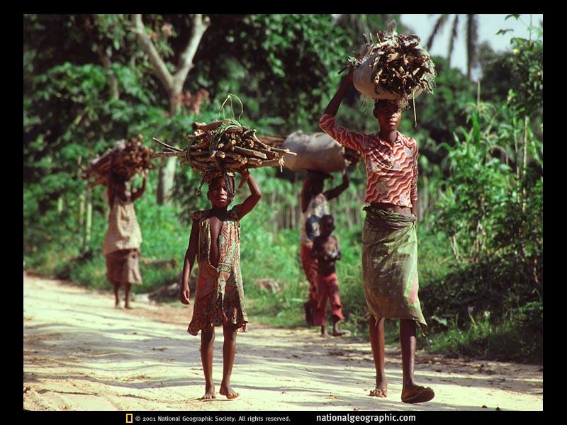 FOTOS ESPECTACULARES DE TODO EL MUNDO - Página 2 Tribu11