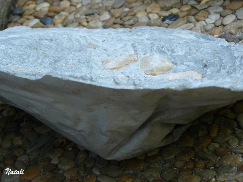 bassin pour tortue d eau 1410