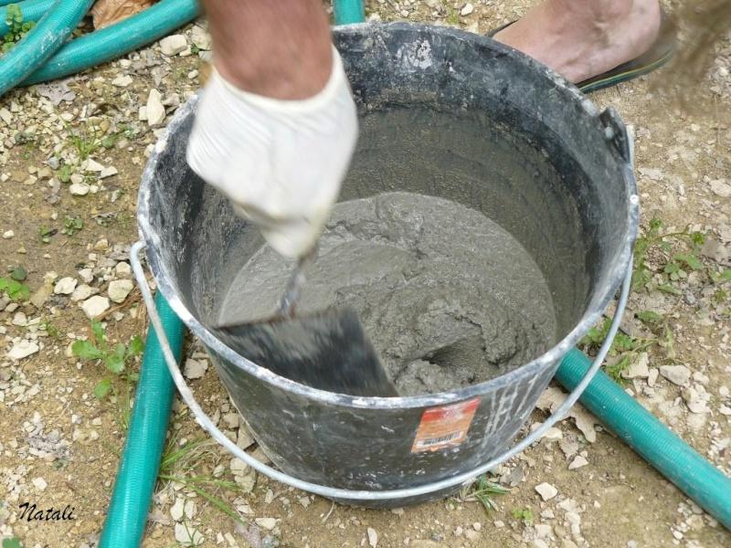 bassin pour tortue d eau 410