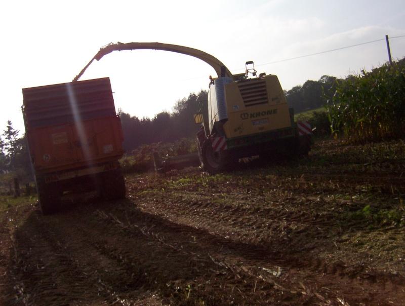 Ensilage de maïs 100_1311