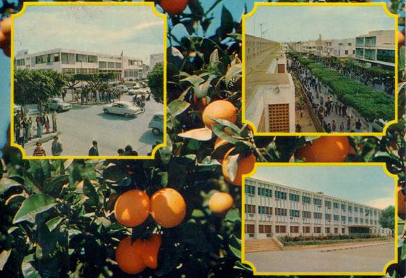 صور لمدينة الأصنام 05030213