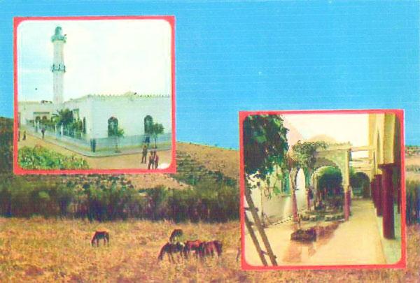 صور لمدينة الأصنام El-asn10