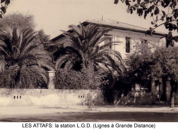 صور لمدينة العطاف Les-at13