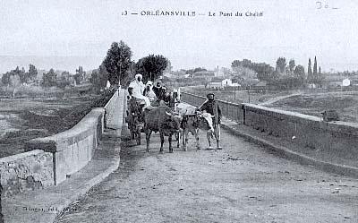 صور لمدينة الشلف أواخر القرن 19م وبداية القرن 20م Orl-po10