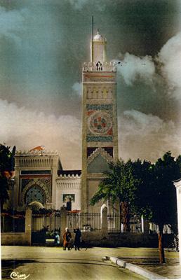 مسجد مدينة الشلف Orlmos11