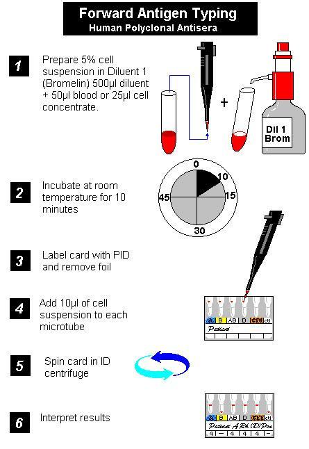 اختبارات بنك الدم عملي مع الصور Clip_i10
