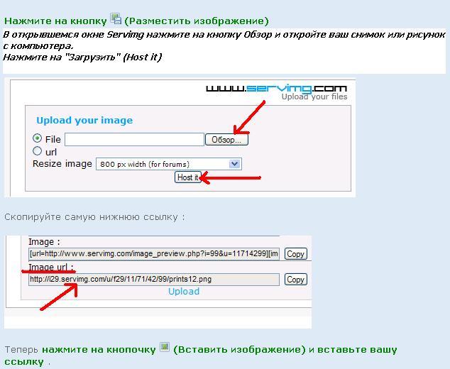 Как добавить изображение 10821010