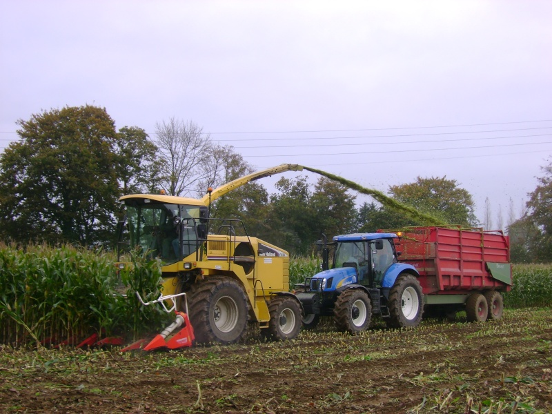 Ensilage de maïs 2008 - Page 4 Dsc04711