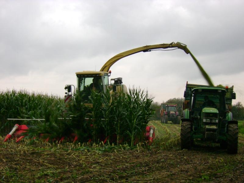 Ensilage de maïs 2008 - Page 4 Dsc04719