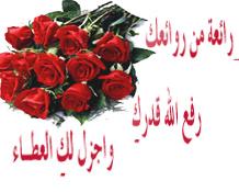 القرآن الكريم مع الترجمة الاصدار الاول كتاب اكتروني رائع 9d0a6610