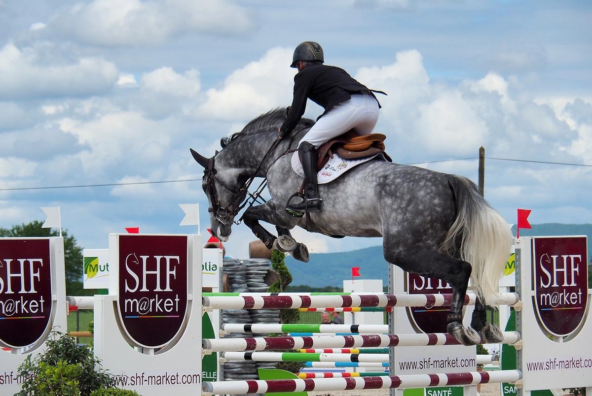 Conseil réglage FZ2000 pour photo équitation saut d'obstacles P5201710
