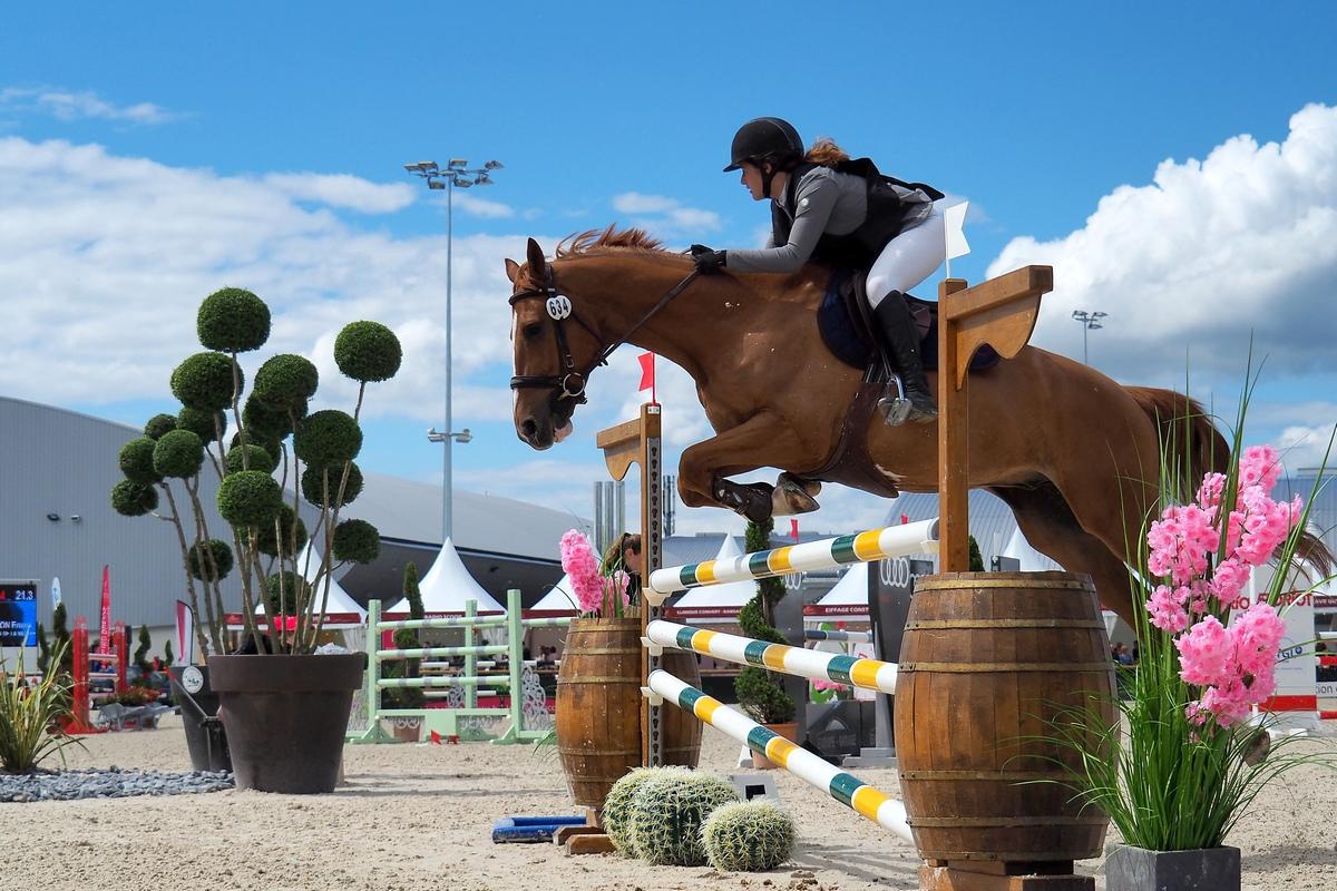 Conseil réglage FZ2000 pour photo équitation saut d'obstacles P5201711