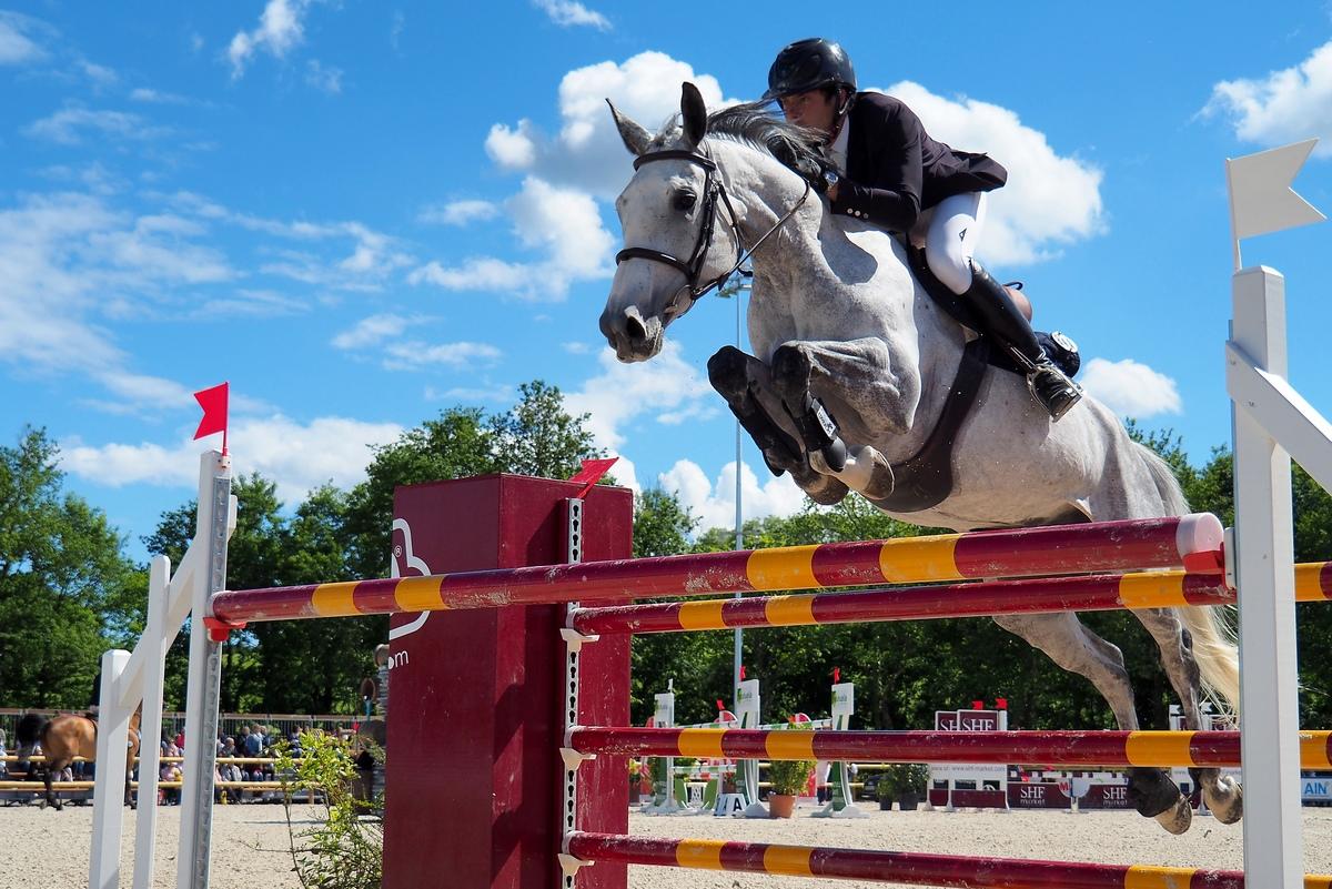 Conseil réglage FZ2000 pour photo équitation saut d'obstacles P5201713