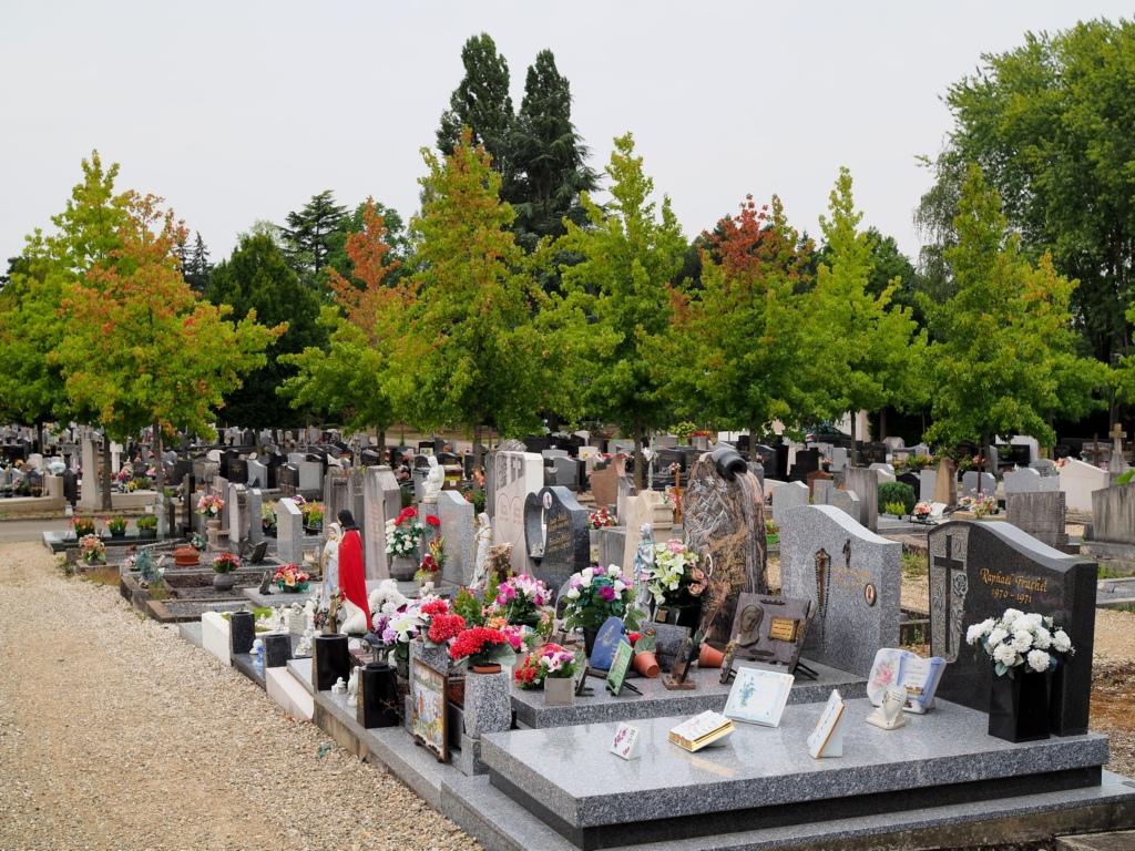 Nos cimetières sont beaux ! P8308718