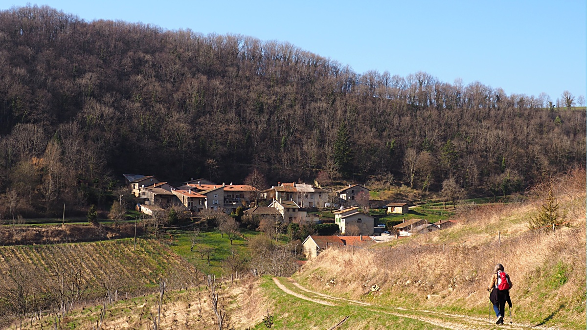 Villages viticoles (ajouts) Q3010414