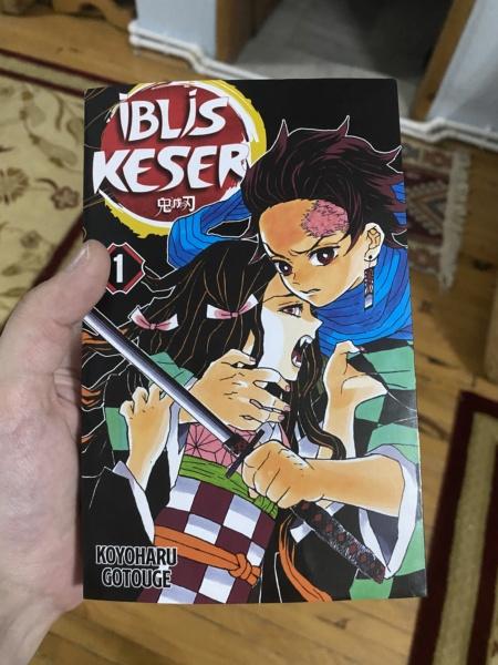 Vos achats d'otaku ! - Page 33 Fde08a10